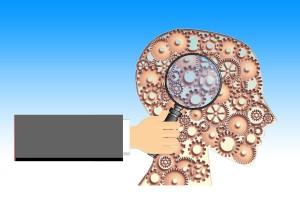 Educación en Neurociencia