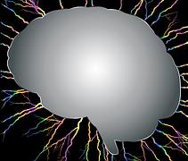 La Meningitis es la inflamación de la membrana que cubre el cerebro